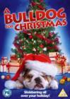 Image for A   Bulldog for Christmas