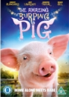 Image for The Amazing Burping Pig
