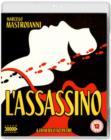 Image for L'Assassino