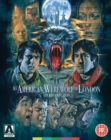 Image for An  American Werewolf in London