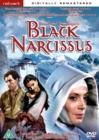 Image for Black Narcissus