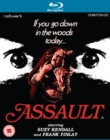 Image for Assault