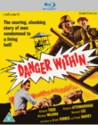 Image for Danger Within