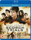 Image for Maze Runner: Chapter II - The Scorch Trials