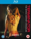 Image for Terminator - The Sarah Connor Chronicles: The Complete Second...