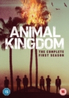 Image for Animal Kingdom: The Complete First Season
