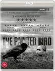 Image for The Painted Bird