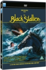 Image for The Black Stallion