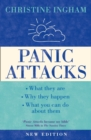 Image for Panic attacks  : what they are, why they happen, what you can do about them