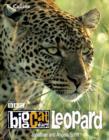 Image for Leopard