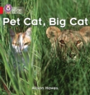 Image for Pet Cat, Big Cat : Band 02a/Red a