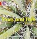 Image for Thick and Thin : Band 02b/Red B
