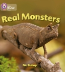 Image for Real Monsters : Band 03/Yellow