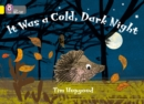 Image for It was a cold dark night
