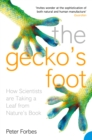 Image for The gecko's foot: how scientists are taking a leaf from nature's book