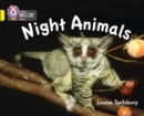 Image for Night animals