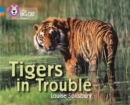 Image for Tigers in trouble