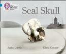 Image for Seal skull