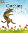 Image for Catching flies  : poems