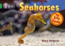 Image for Seahorses  : the life cycle