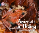Image for Animals in hiding