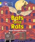 Image for Bats and rats