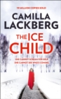 Image for The ice child