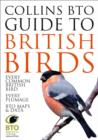 Image for Collins BTO guide to British birds
