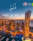 Image for Dubai From the Sky : Level 11