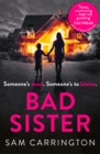 Image for Bad sister
