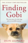 Image for Finding Gobi  : the true story of a little dog and an incredible journey