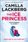 Image for The ice princess