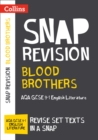 Image for Blood brothers  : AQA GCSE 9-1 English literature text guide