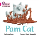 Image for Pam Cat