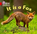 Image for It is a fox