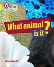 Image for What animal is it?