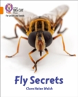 Image for Fly secrets