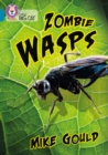 Image for Zombie wasps