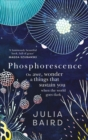Image for Phosphorescence  : on awe, wonder and things that sustain you when the world goes dark