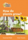 Image for How do plants grow?