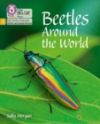 Image for Beetles around the world