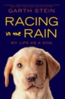 Image for Racing in the Rain : My Life as a Dog