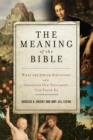 Image for The Meaning of the Bible : What the Jewish Scriptures and Christian Old Testament Can Teach Us