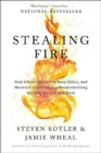 Image for Stealing fire  : how Silicon Valley, the Navy SEALs, and maverick scientists are revolutionizing the way we live and work