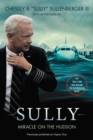 Image for Sully  : my search for what really matters