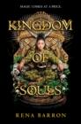 Image for Kingdom of Souls