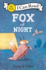 Image for Fox at night