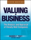 Image for Valuing small businesses and professional practices