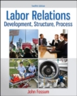 Image for Labor relations  : development, structure, process