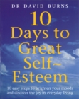 Image for Ten days to great self-esteem